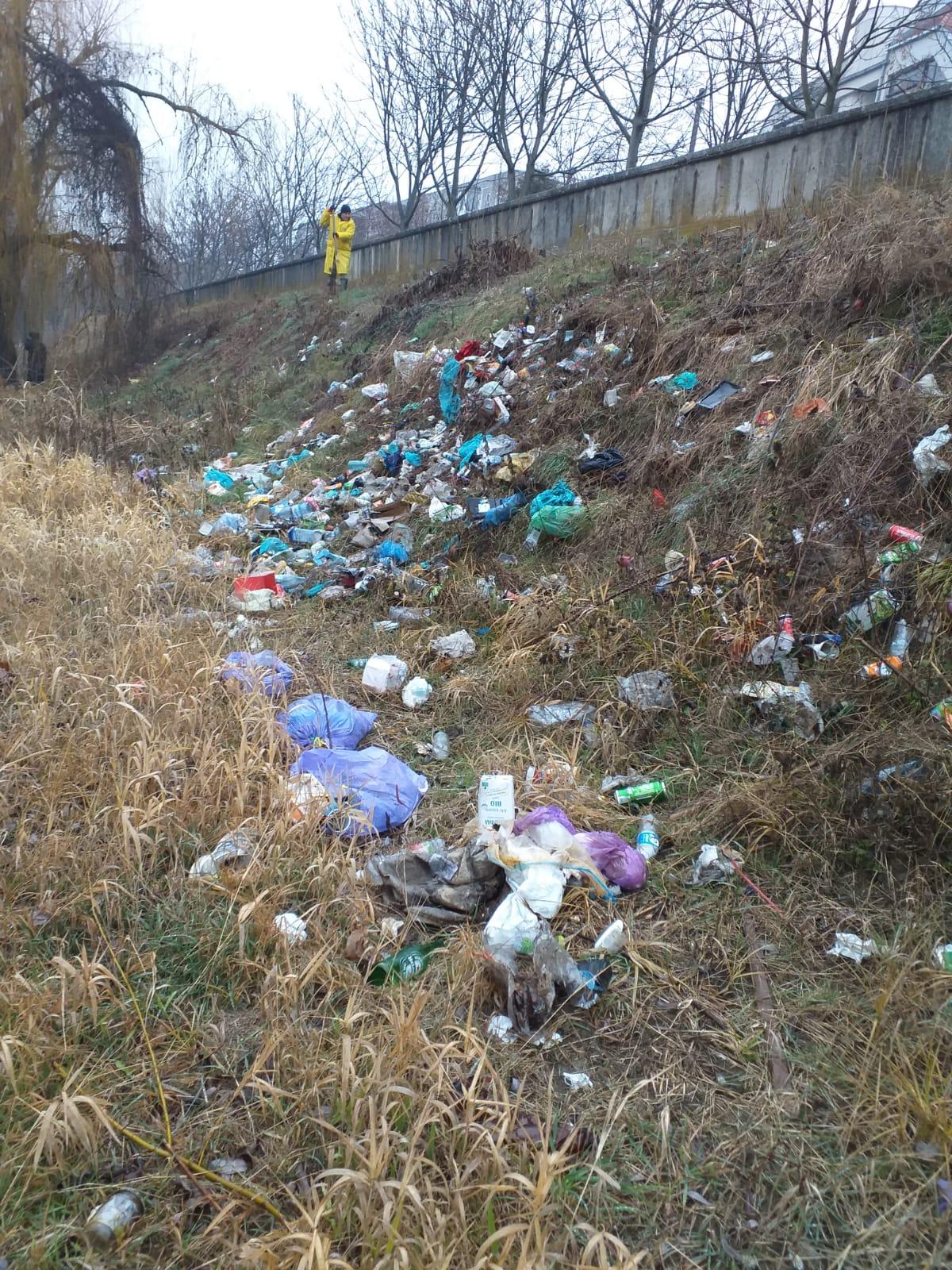 Reprezentanții ABA Banat au strâns două tone de deșeuri de pe malul Timișului🗑